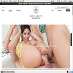 Angela White Account 2014