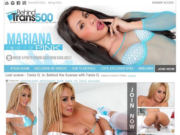 Behindtrans500 Full Site