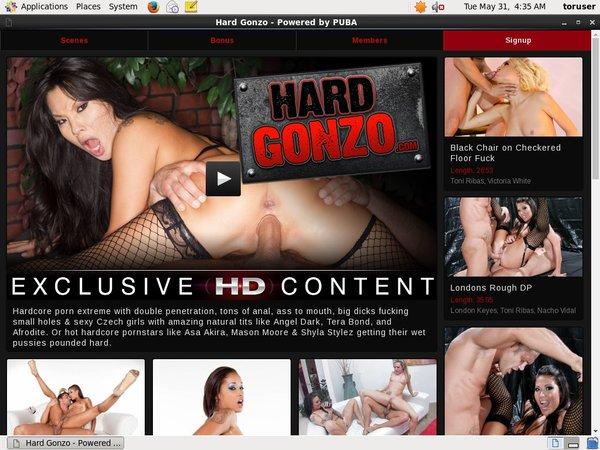 Hard Gonzo 사용자 이름