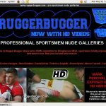 Log In Rugger Bugger