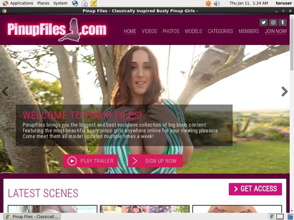 Pinupfiles.com Join By Text Message